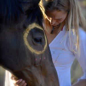 Meditation With Horses